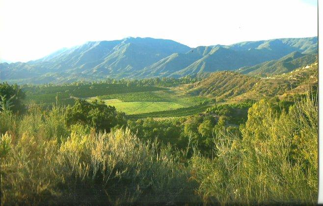 Ojai Valley Rolling Hills