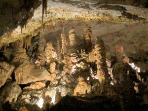 Posojna Cave Cathedral of Stalagmites
