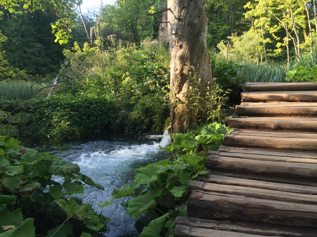 Raised wooden pathway of Plitvice National Park