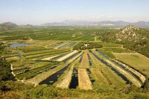Croatia Farming