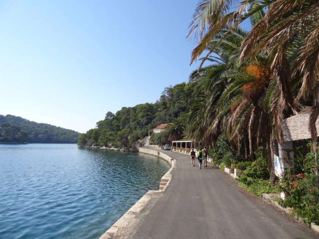 Mljet Lake Path Croatia
