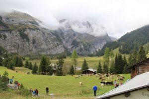 Mid-Alps Flims