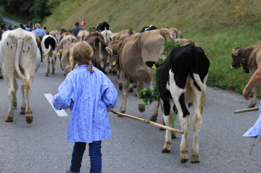 Flims AlpAbzug little girl farmer