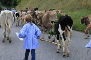 Flims AlpAbzug little girl farmer