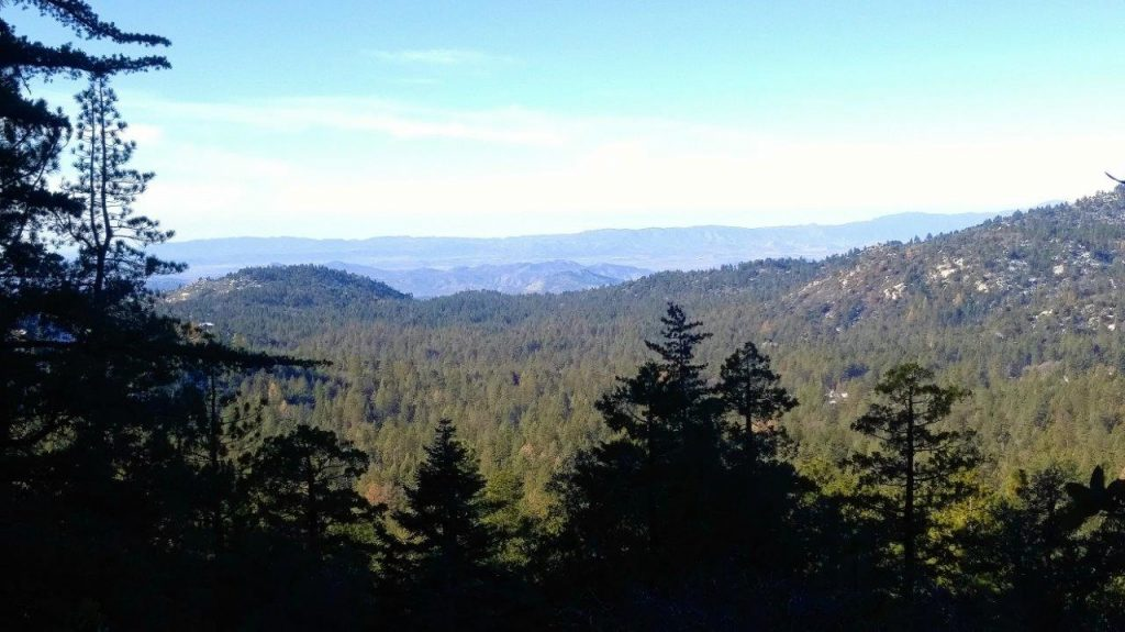 Idyllwild Mt. view