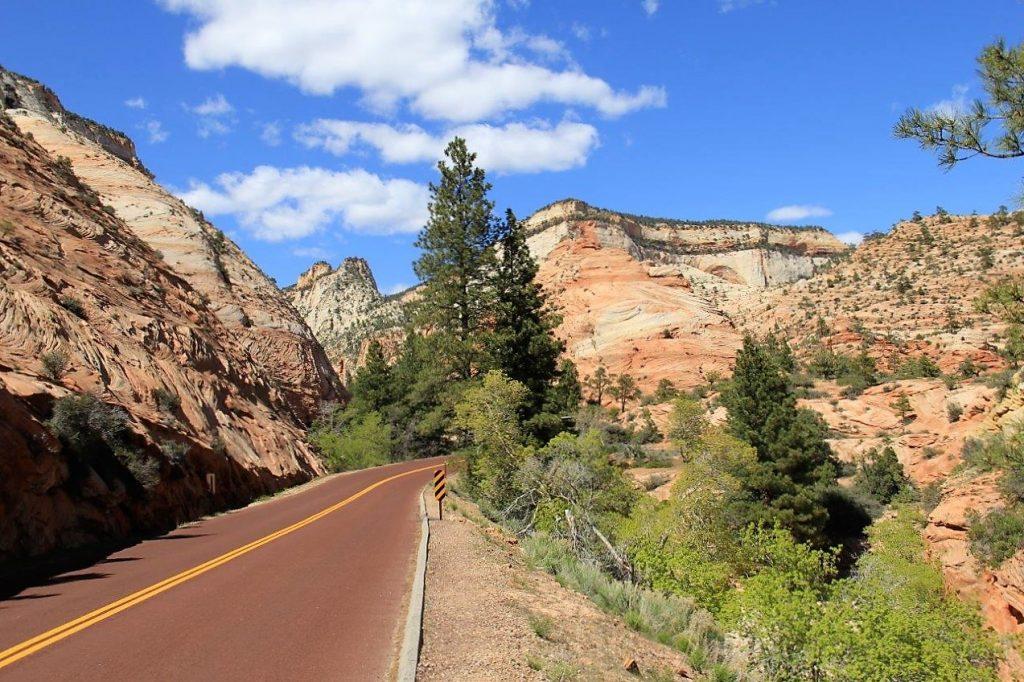 Zion roads