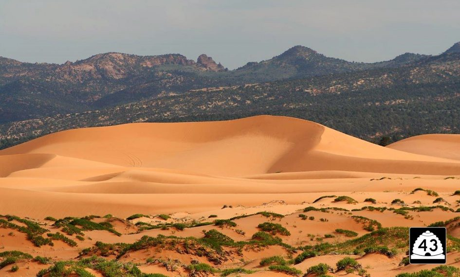 Coral Pink Sand Dunes Utah State Route