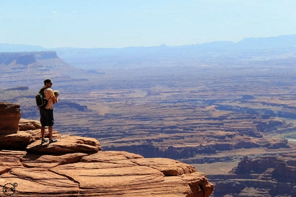 Taking in the views at Dead Horse Point State Park