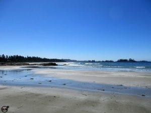 Vancouver Island Beaxh